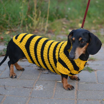 Bee Dog Sweater Clothes Hand Knitting dachshund