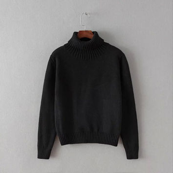 Winter Sweater Pullover Bottoming Shirt [6332338244]