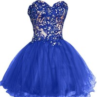 Sunvary Lace and Tulle Short Homecoming Dresses for Juniors Pageant Gowns