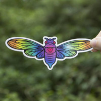 Rainbow Cicada Sticker, Insect Vinyl Sticker