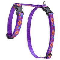 Lupine Spring Fling Small H-Style Harness for Dogs & Cats (1/2 Inch)