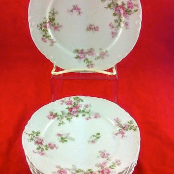 Set of 6 Haviland Limoges Pink Roses Bread & Butter Plates, France