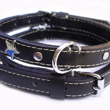 Stars in Their Eyes Dog Collar