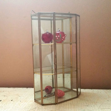 Vintage Brass and Glass Curio Cabinet Miniatures Wall Hanging Display Case