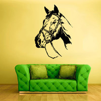 Wall Vinyl Sticker Decals Decor Art Bedroom Design Horse Equine Nag Head (z640)