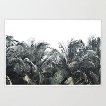 Cozumel Palms - Photograph Print, Muted Green Coconut Palm Trees, Beach Surf Style Home Interior Backdrop Accent. In 8x10 11x14 16x20 20x30