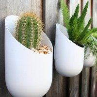 Wall Planter from Wallter / Buy it now - Playwho.com