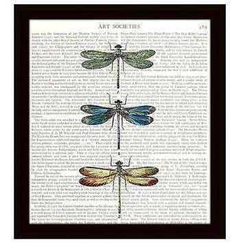 Dragonfly Dictionary Art Print 8 x 10 Colorful Dragonflies New Home Decor