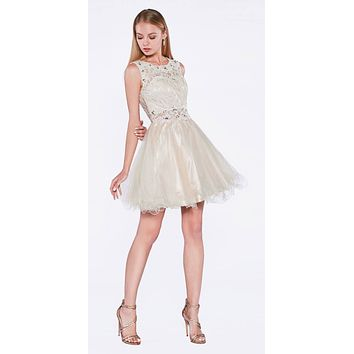 Champagne Lace Beaded Short Homecoming Dress Sleeveless