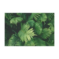 Green Fern Leaves Photography Canvas Print