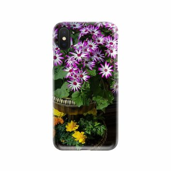Pericallis Senetti Daisy phone Case