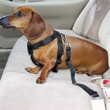 Pet Safety Care Dog/Cat Vehicle Car Seat Seatbelt Harness Lead Clip