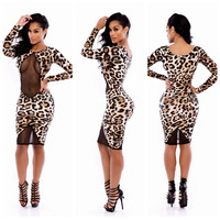 Leopard Print with Mesh Accent Long Sleeve Bodycon Dress
