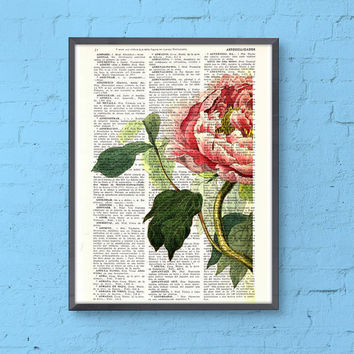 Peony Flower detail , wall art book print - Floral wall art - Upcycled book page wall art book print, wall hanging , Pink Peony , Gift her