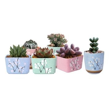 Cute Ceramic Decorative Flower Pots