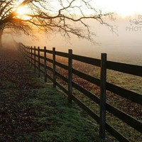 Fence Line Sunrise 8x10 fine art print by Remyphotog on Etsy