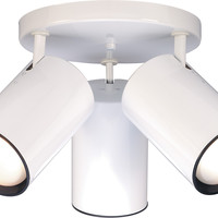 Close-To-Ceiling Semi Flush R30 Straight Cylinder Light Fixture