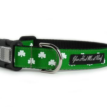 Luck of the Irish Dog Collar