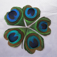 100pcs/lot Hand-trimmed Heart Shape Peacock Eye feathers  for Wedding invitation Table Centerpiece DIY scrapbook or hairpiece
