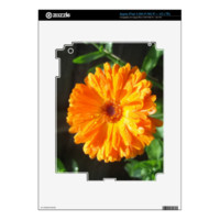 Sunny Calendula Raindrops iPad 3 Decals