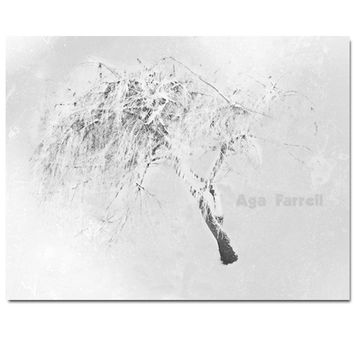 Willow Tree Art, Black and White Photography, Abstract Tree Art, Modern Artwork, Weeping Willow Wall Decor, Willow Branches, Innocent, 8x12