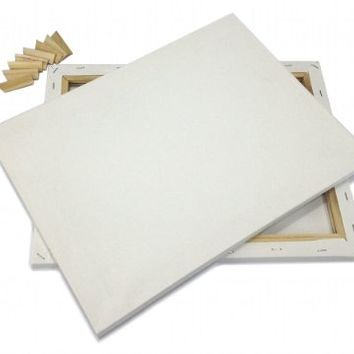 """Lot 2 ARTIST CANVAS 24x48"""" BLANK Pre-Stretched Framed Cotton Double Gesso"""