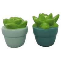 Threshold™ Succulent Salt and Pepper Shakers - Assorted (Sold Individually)