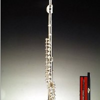 Flute w Music Case Stand Miniature Musical Instrument