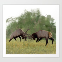 Bull Elk Fighting  Art Print by North Star Artwork
