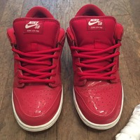 Nike Sb Ruby Red Slippers Size 7-11