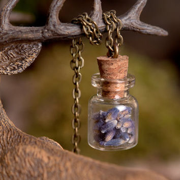 Lavender necklace, lavender seeds necklace, nature necklace, purple necklace, antique brass necklace, glass vial necklace