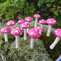 awesome set of 24 miniature mushrooms 1 inch tall terrarium fairy garden christmas wreath mushroom planter indoor outdoor use