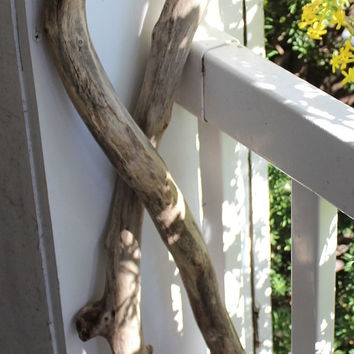 Sculptural Driftwood Art - Forever Intertwined , 2 Rustic Natural Driftwood Pieces for Home Decor and Event Display