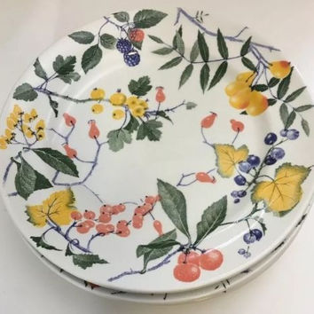 Crate & Barrel Set Of 4 MultiColor Dinner Plate Fruits Berries Design Made Italy