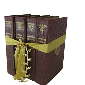 Burgundy Book Gift Set, Decorative Books ,  Book Lover Gift, Gifts for the Home, Gifts Under 30