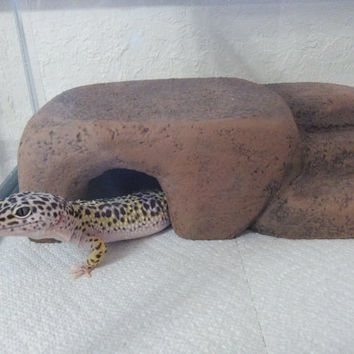 reptile hide - basking platform - reptile cave - leopard gecko - bearded dragon - snake - herphomes - vivarium decor - 20 gallon
