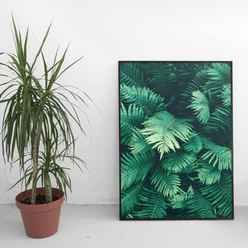 Fern poster.Green Photography.Botanical Print.Tropical leaves. Green leaf. Nature poster.Printable leaves, Palm leaves.  Instant download