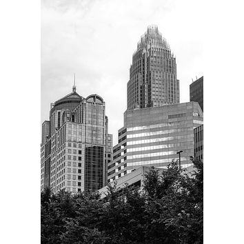Charlotte Skyscrapers Seen from Romare Bearden Park (A0030545)