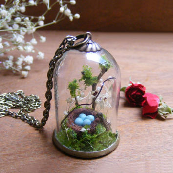terrarium necklace, Glass terrarium pendant , gift for her, moss bottle, eggs in a nest, gift from Ireland, miniature terrarium, robins nest