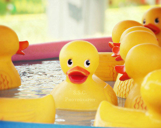 Carnival Game Photo Rubber Ducky Art From S S C Photography