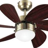 Turbo Swirl 30-Inch Six-Blade Indoor Ceiling Fan