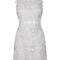 TALL Lace Skater Dress - Silver