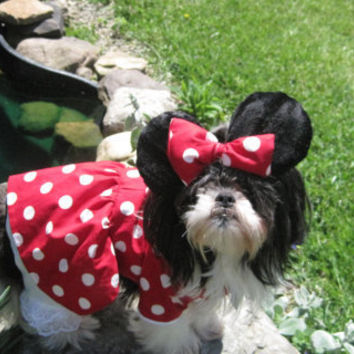 Minnie Mouse Dog Costume size Medium