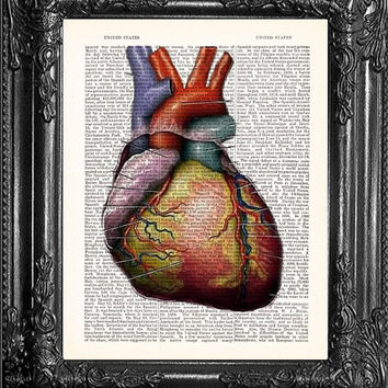 ANATOMICAL HEART Human Anatomy human heart book page art print on dictionary antique book page ANATOMICAL Heart Poster Dorm Room Decor