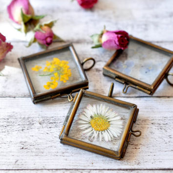 Window Locket Necklace with Real Pressed Daisy - Daisy Flower Glass Pendant - Antiqued Brass Locket - Mini Terrarium Jewelry