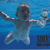 Nirvana Nevermind Album Cover Poster 24x36