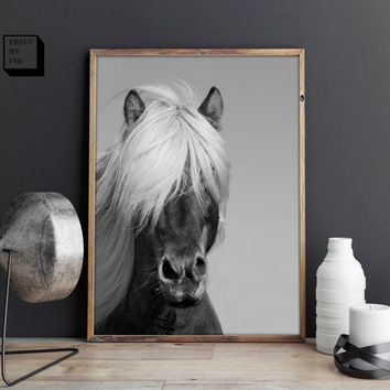 Horse photo print horse art black and white print black and w
