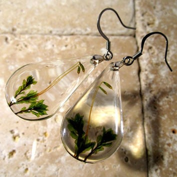 Moss (Mnium sp.) earrings, dungle earring, plant jewelry, leaf jewellery, bryophyte, woodland, nature