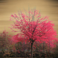 Pink Tree Art Print | Print Shop