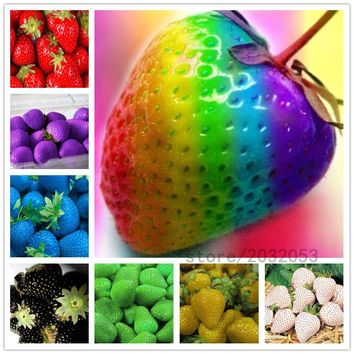 300pcs/bag rainbow strawberry seeds,giant strawberry,rare bonsai organic fruit seeds,9 colours,strawberry plants for home garden